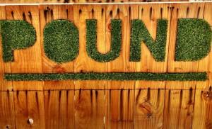 Gardening at Pound